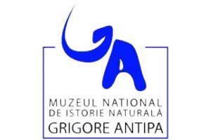 LogoAntipaNou